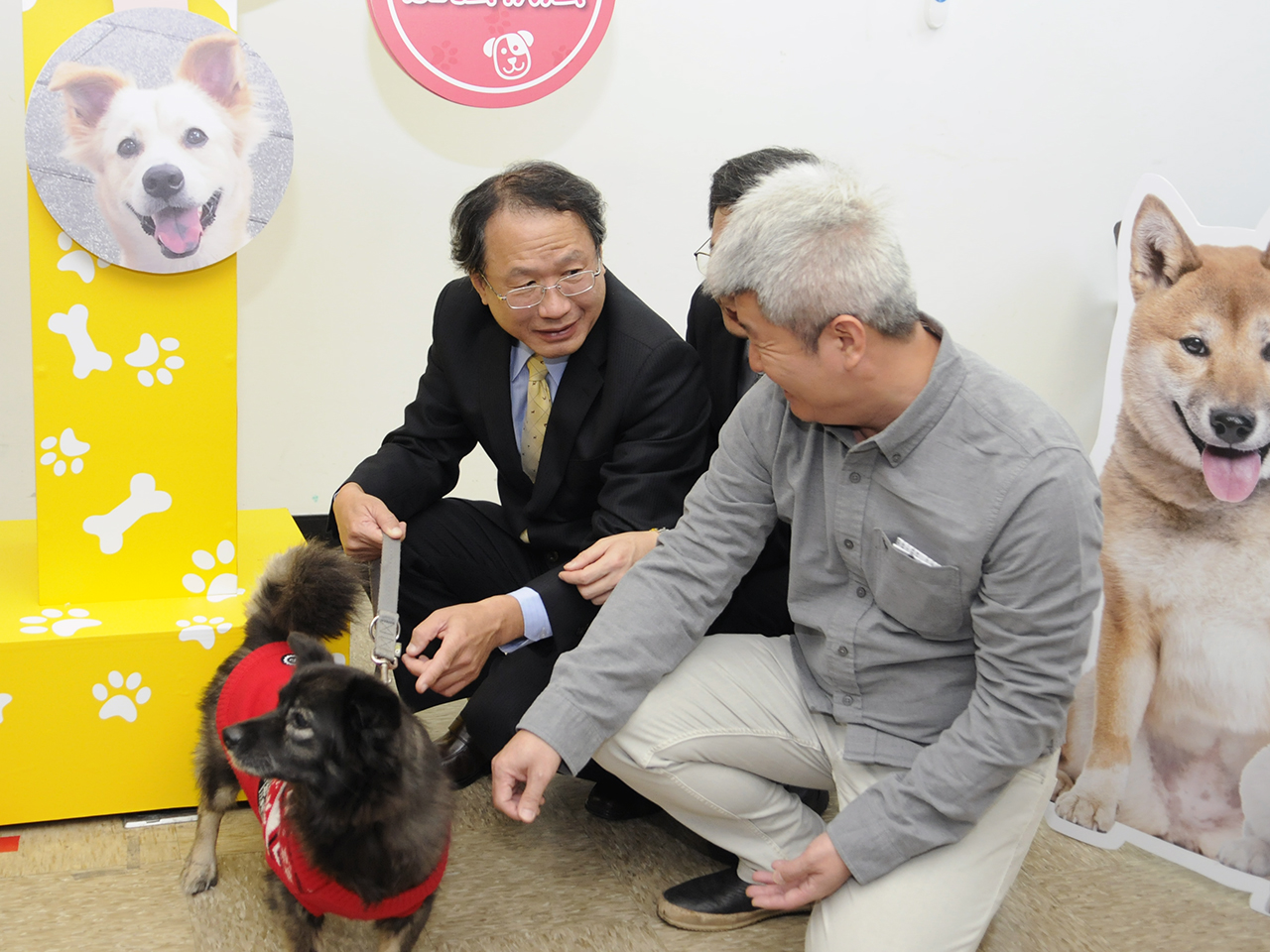 "Taiwan Implements ""No-kill"" Policy on Shelter Animals (1)"