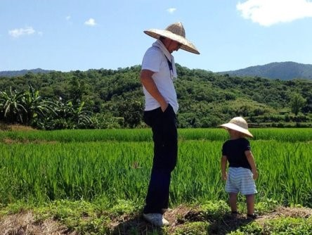 Picture 7: For the health of the next generation, Lo Yung-chang cultivated black rice with friendly farming methods.